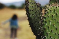 mexico photography, mexico, teotihuacan mexico, photography, travel photography, travel photographer, nashville travel photographer