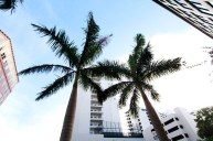 florida corporate photography, florida photography, sarasota photography, corporate photographer, corporate photography, florida casual photography