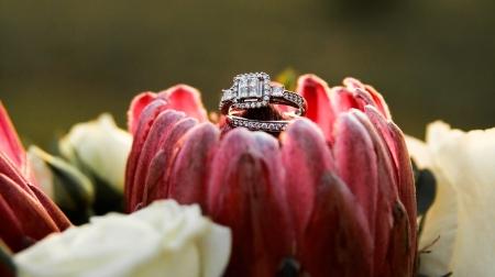 black friday wedding deal, black friday wedding, wedding photography, wedding deal, wedding photography nashville, nashville wedding photography, nashville wedding photographer